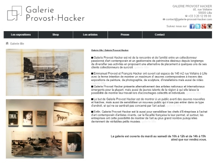 galerie provost-hacker lille art eric bourdon